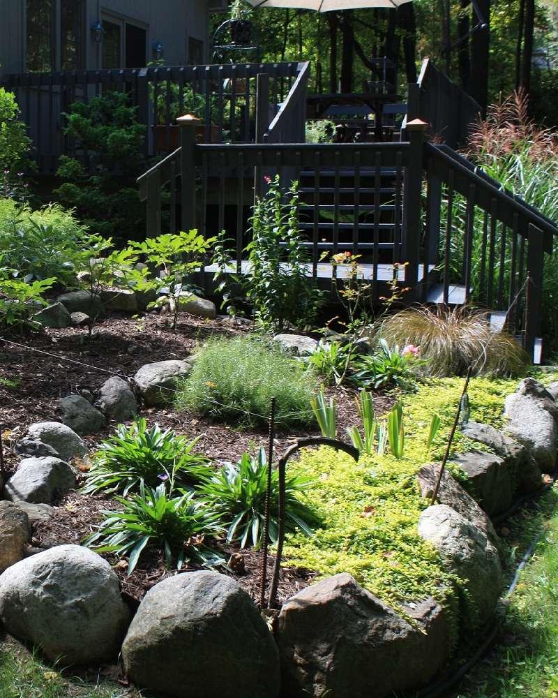 Interleafings Garden Designers Roundtable Expanding: M&S Gardening Services